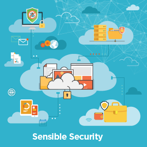 Sensible Security Whitepaper